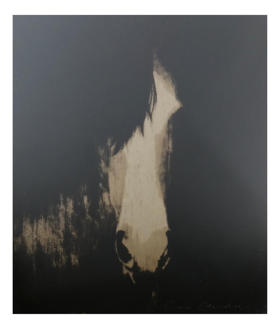 Joe Andoe, 3 Horse Lithographs - 3