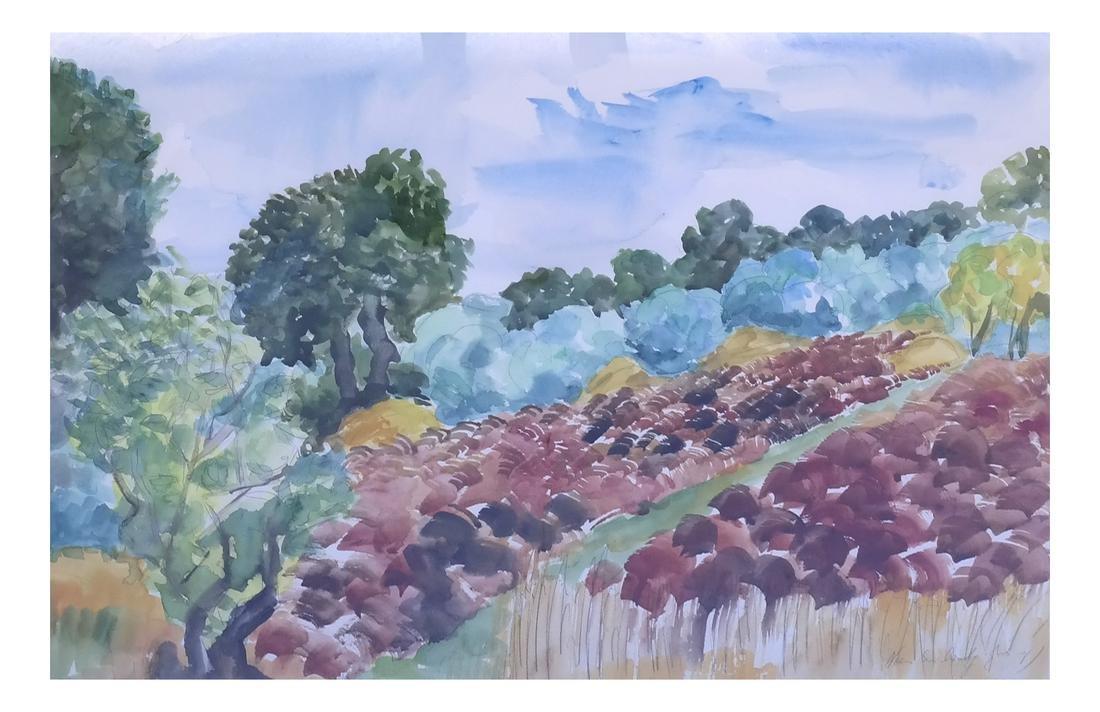 Framed Landscape, Watercolor on Paper