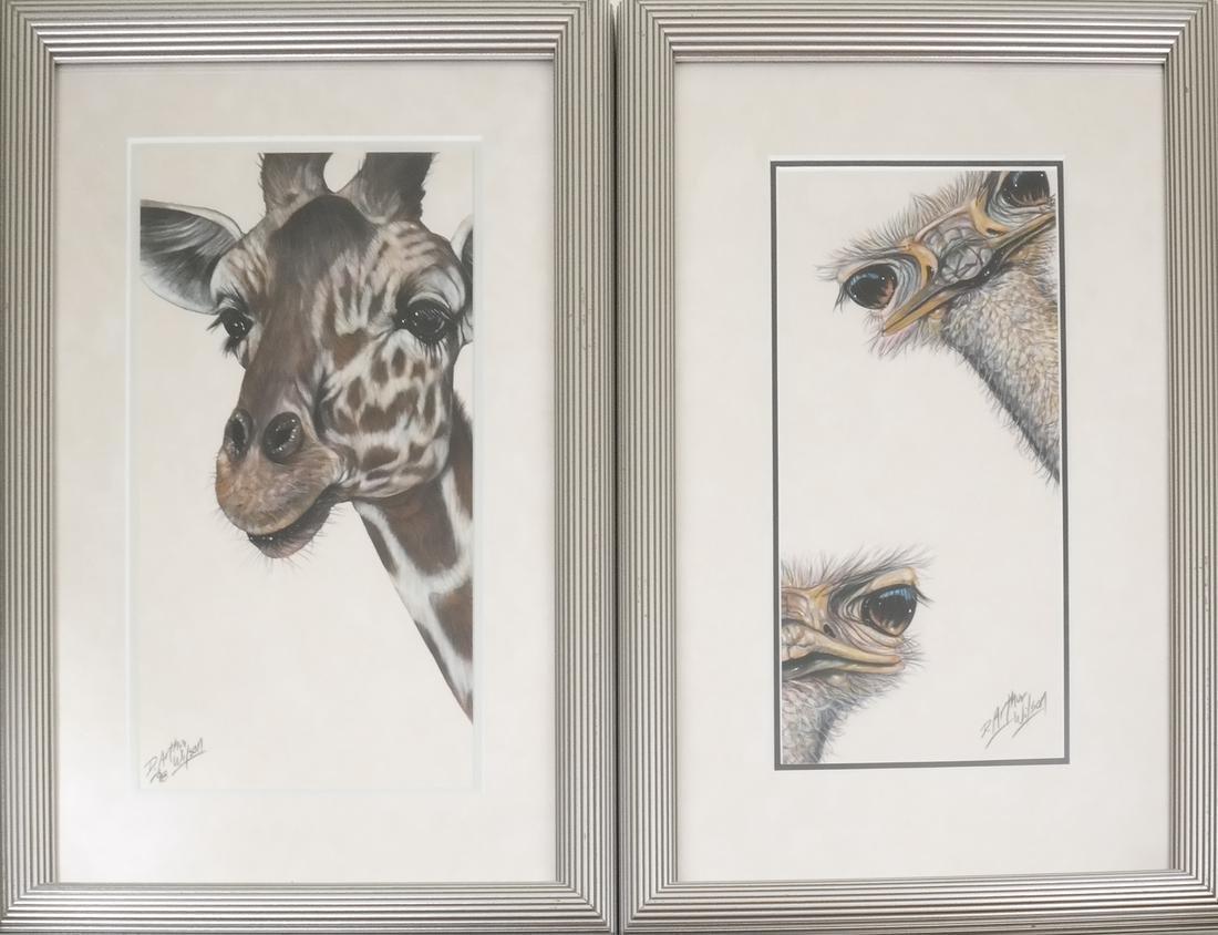 D. Arthur Wilson, Pair of Prints, Ostrich and Giraffe