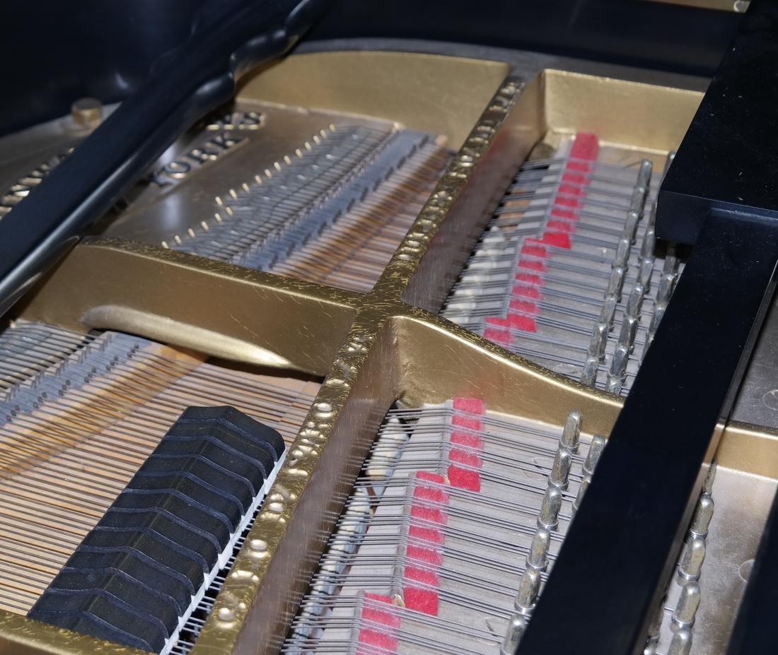 Steinway & Sons, New York Model M Studio Grand Piano - 7
