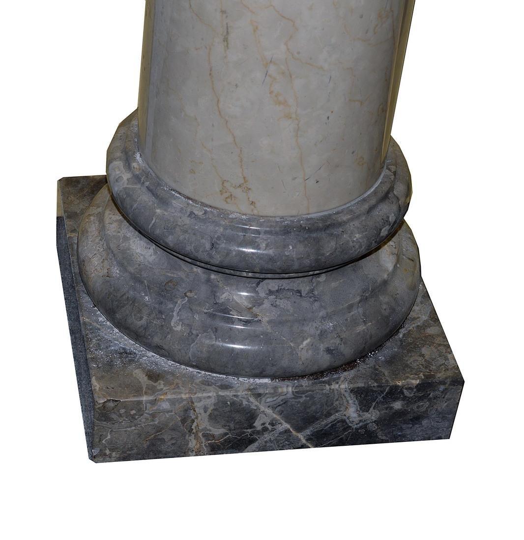 Pair of Polished Doric Columns - 4