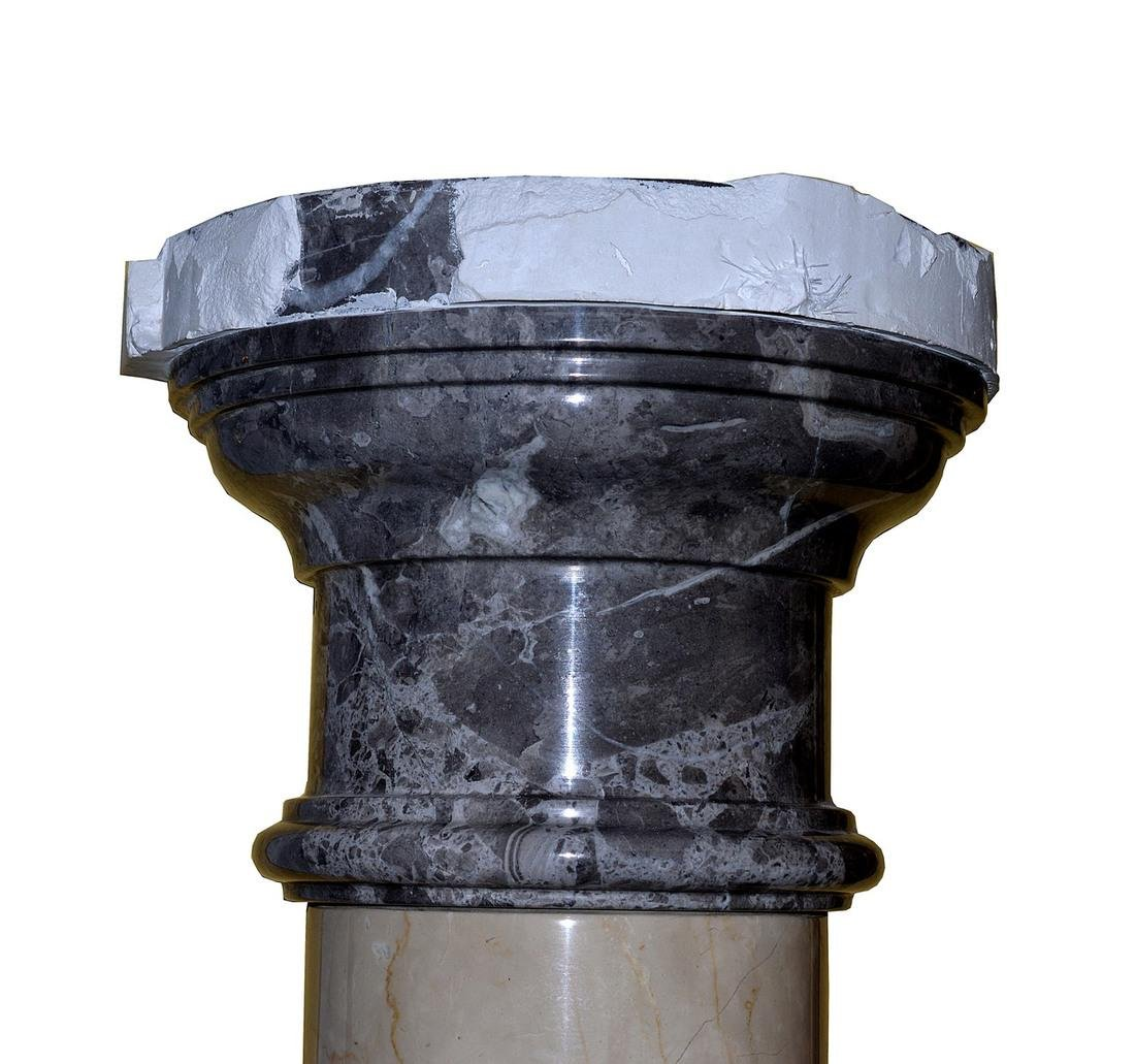 Pair of Polished Doric Columns - 5
