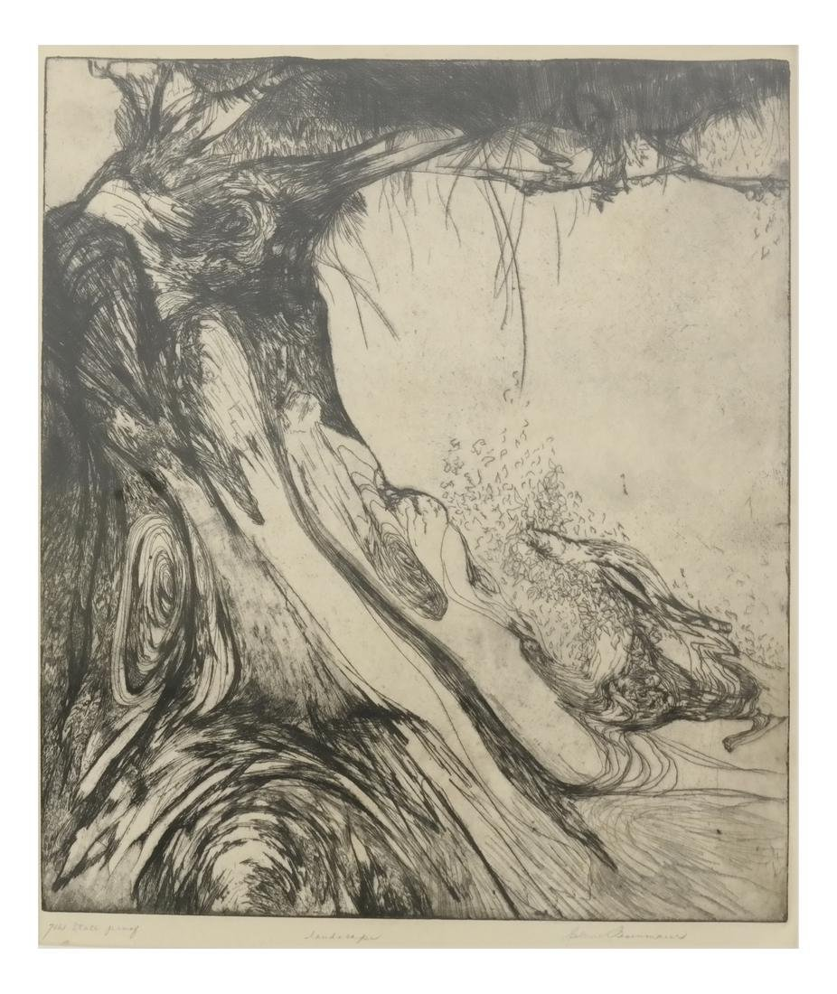 Helen Fesenmaier - Landscape - Etching