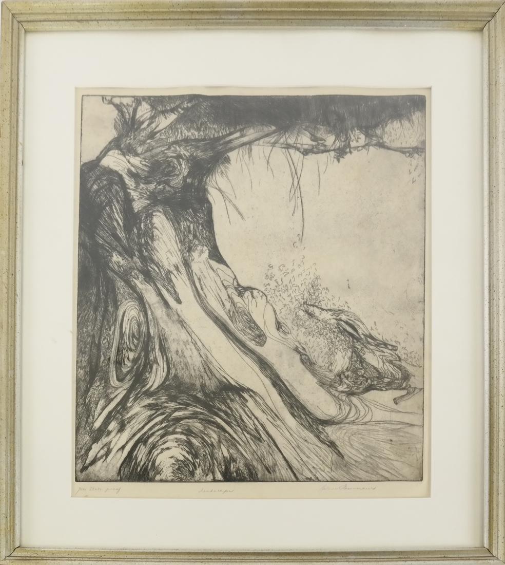 Helen Fesenmaier - Landscape - Etching - 2