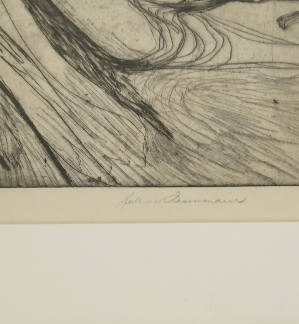 Helen Fesenmaier - Landscape - Etching - 3