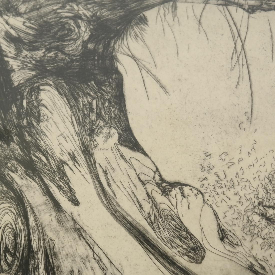 Helen Fesenmaier - Landscape - Etching - 5