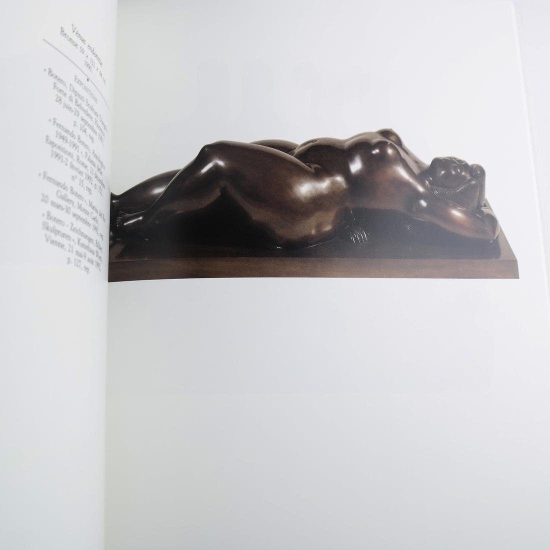 Cased Volumes, Botero Aux Champs Elysees - 6