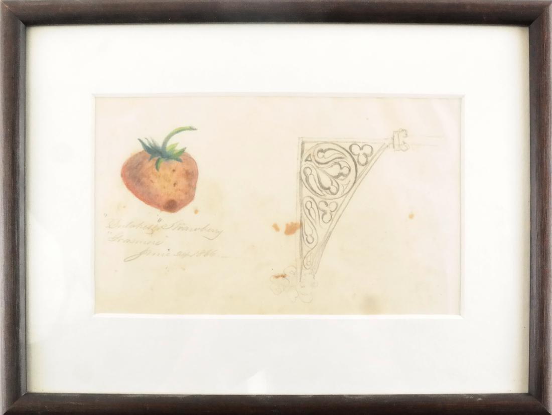William Trenton Bogs, Strawberry - Watercolor on Paper - 2
