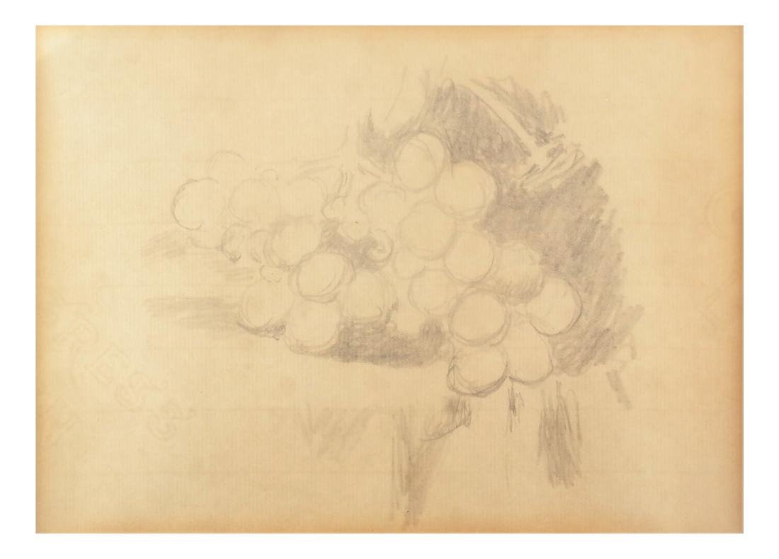 Robert L. Newman, Grapes - Graphite