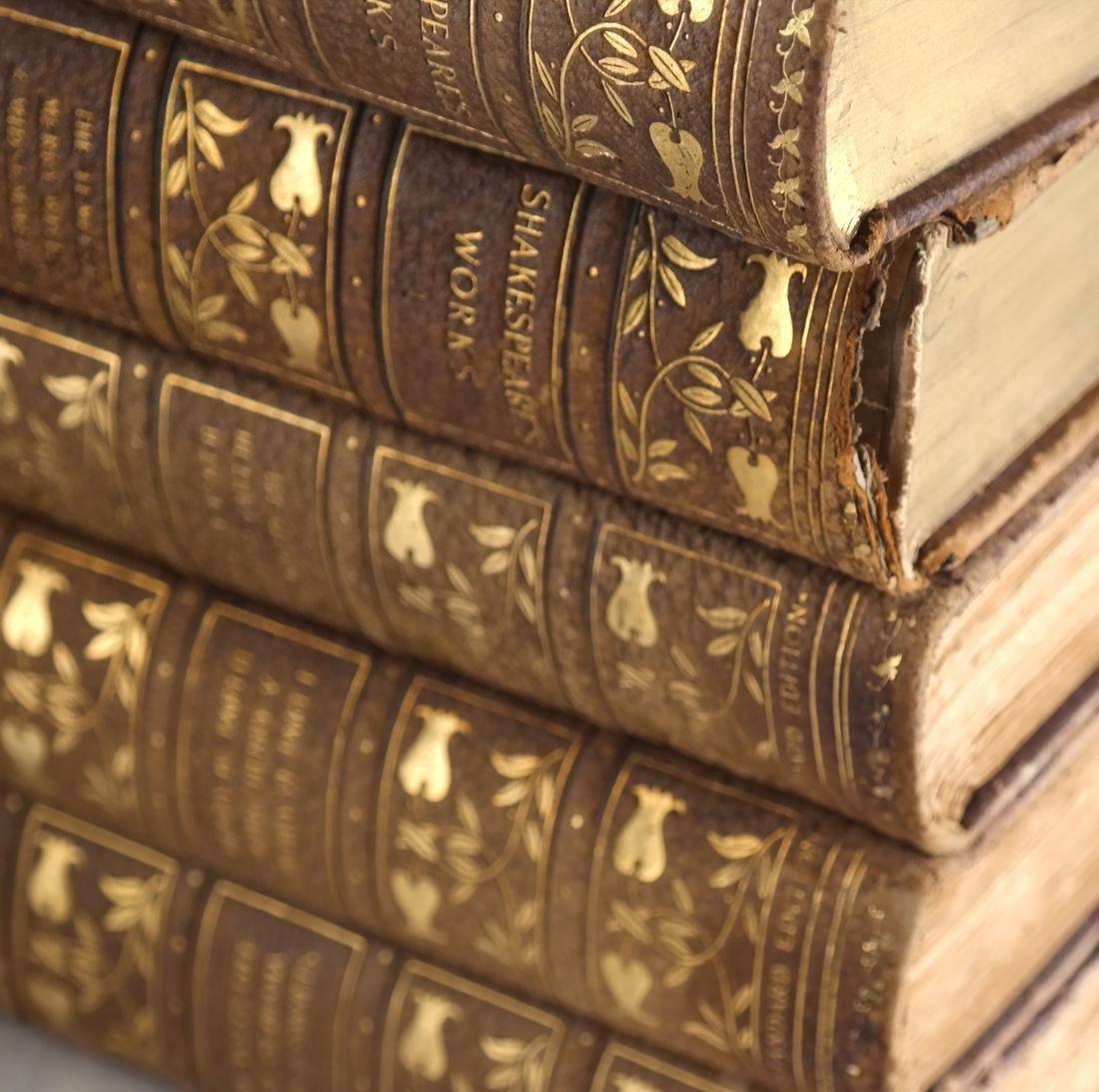 13 Volumes of William Shakespeare - 4