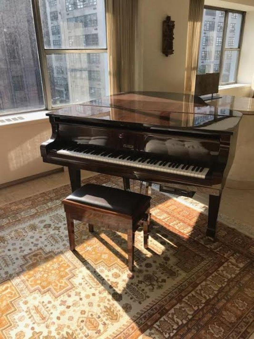 Player Piano by Petrof, w/ Bench