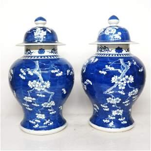 Pair Floral Decorated Porcelain Ginger Jars