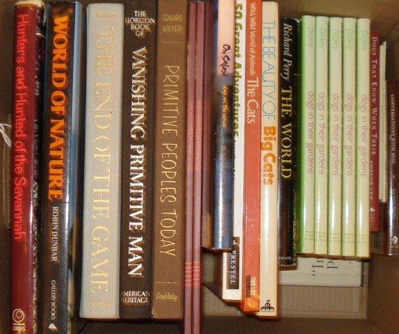 56: Lot Books