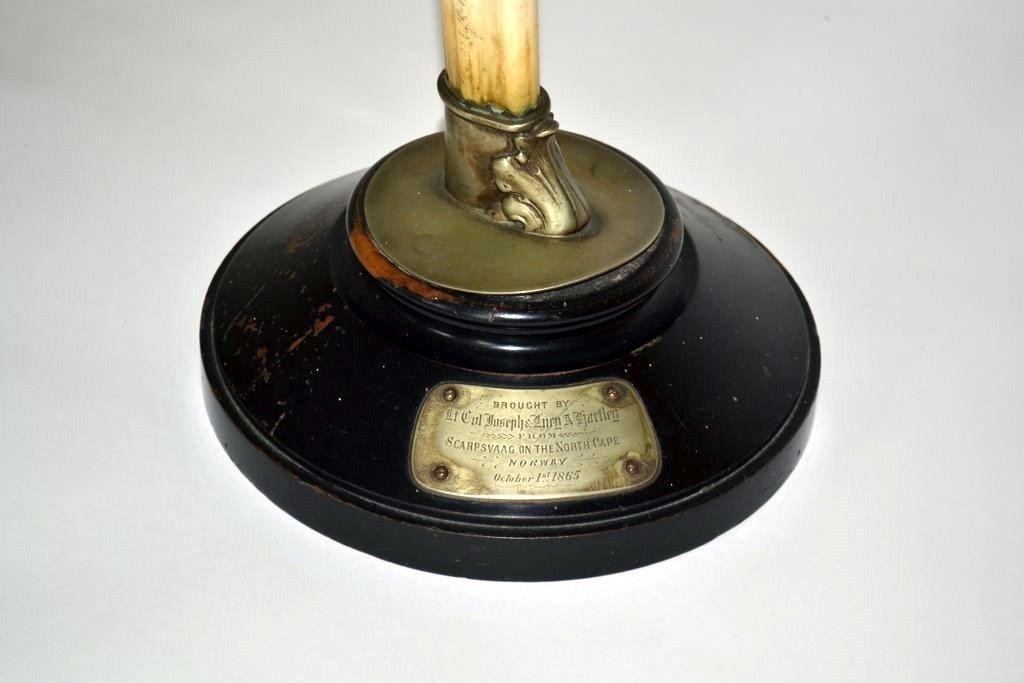 480: 19th Century Ivory Tusk - 2