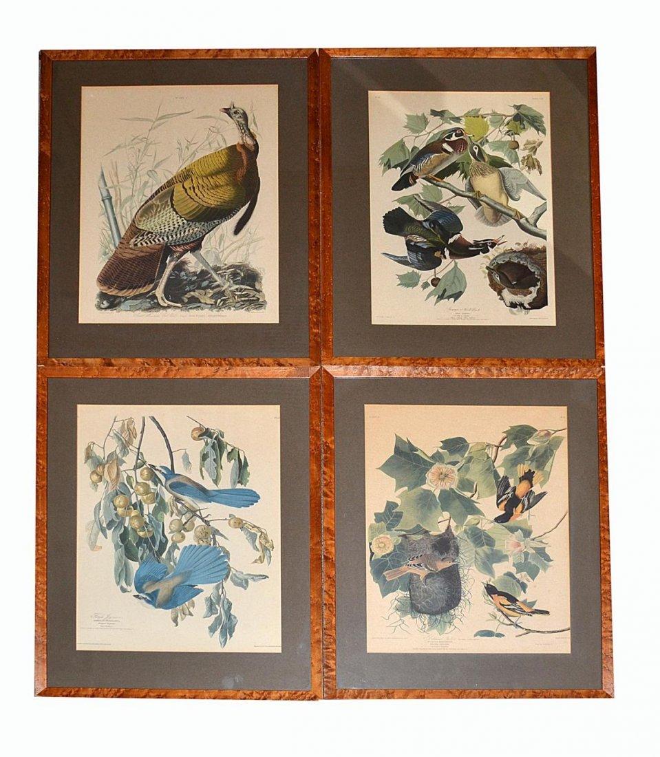 23: Set of Four Audubon Reproduction Prints