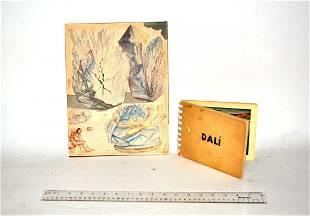 Salvador Dali, Watercolor on Paper and Portfolio