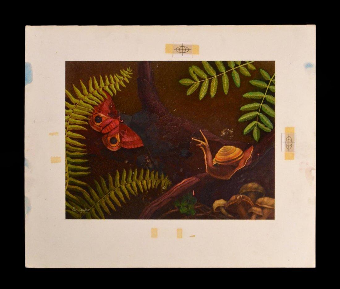 "Alex Gnidziejko, ""Life of Forest Floor"""