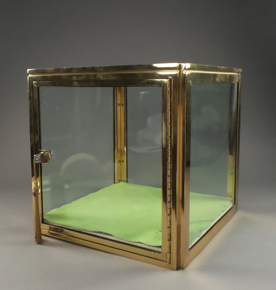 Brass and Glass Display Case
