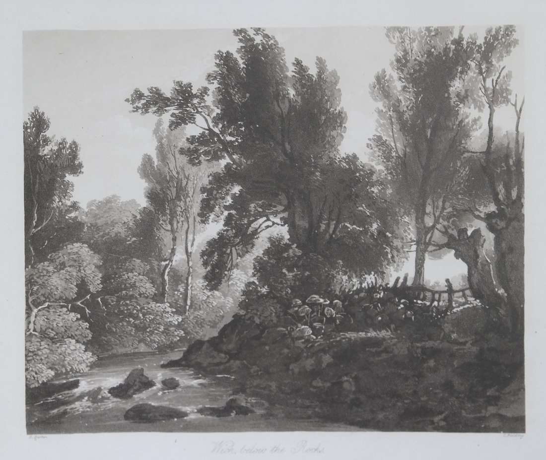 Two Antique Tree Lithographs - 3