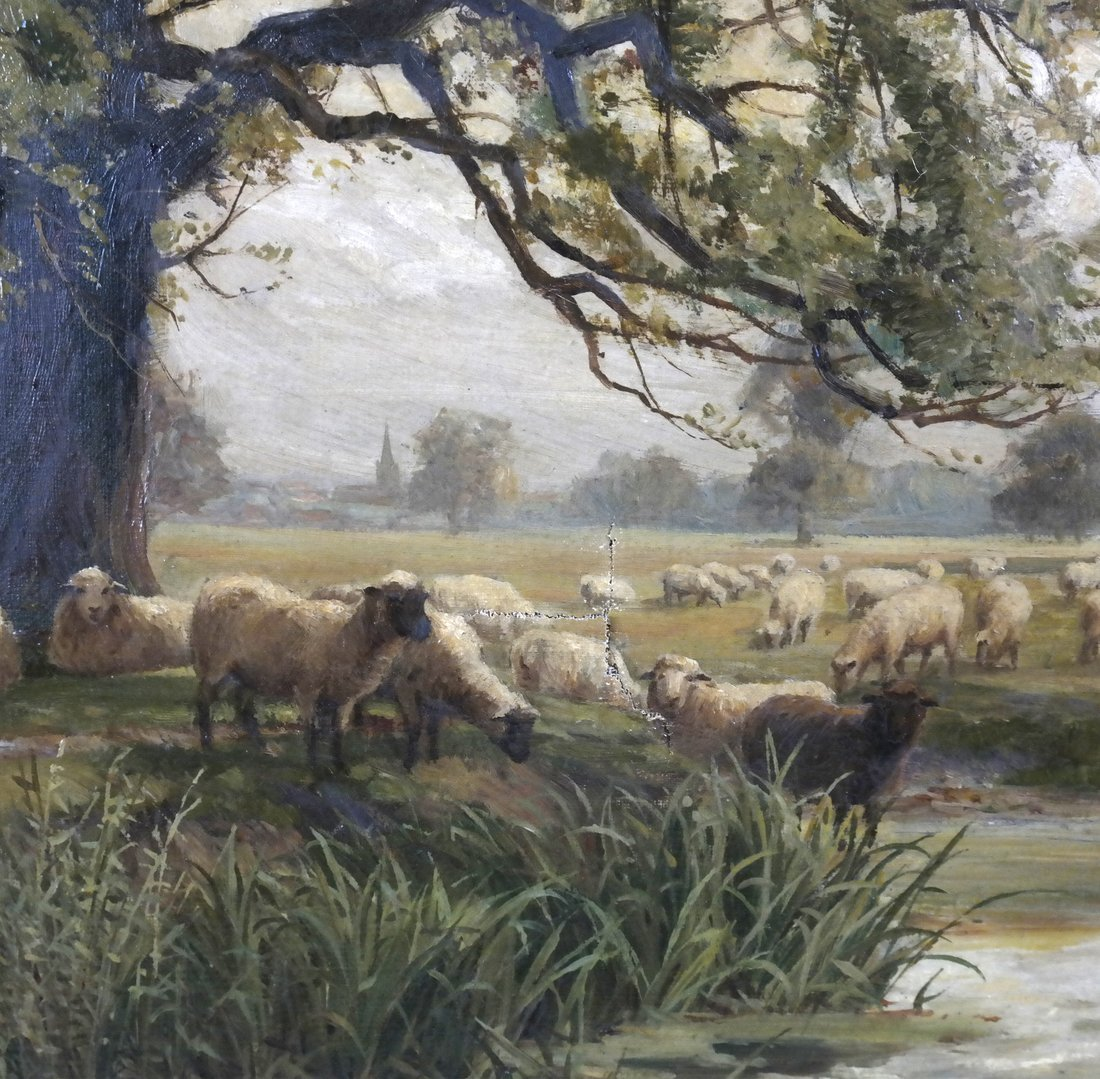 John Macpherson - Landscape with Sheep - 5
