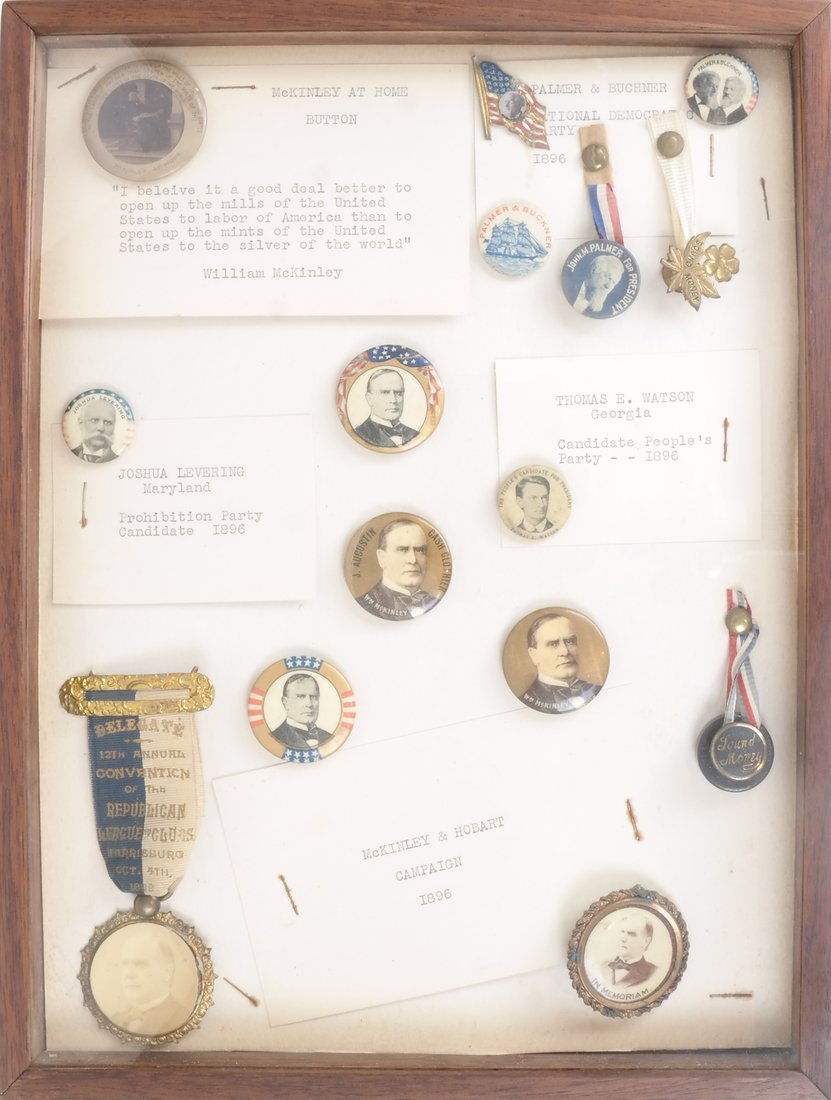 Monroe D. Ray Frame - 1896 Candidates