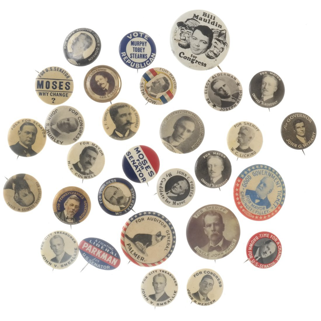 Twenty-nine Various Local Election Buttons