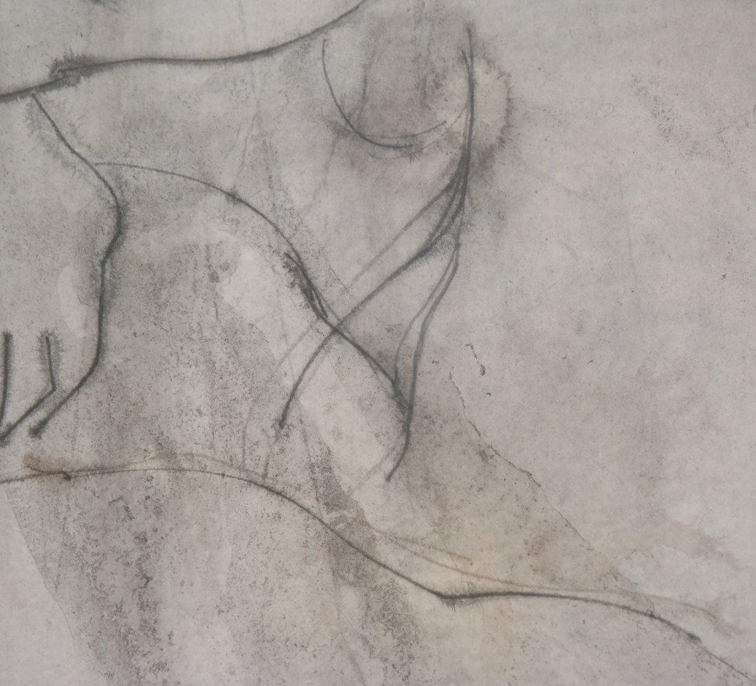Nude Torso, Print - 4