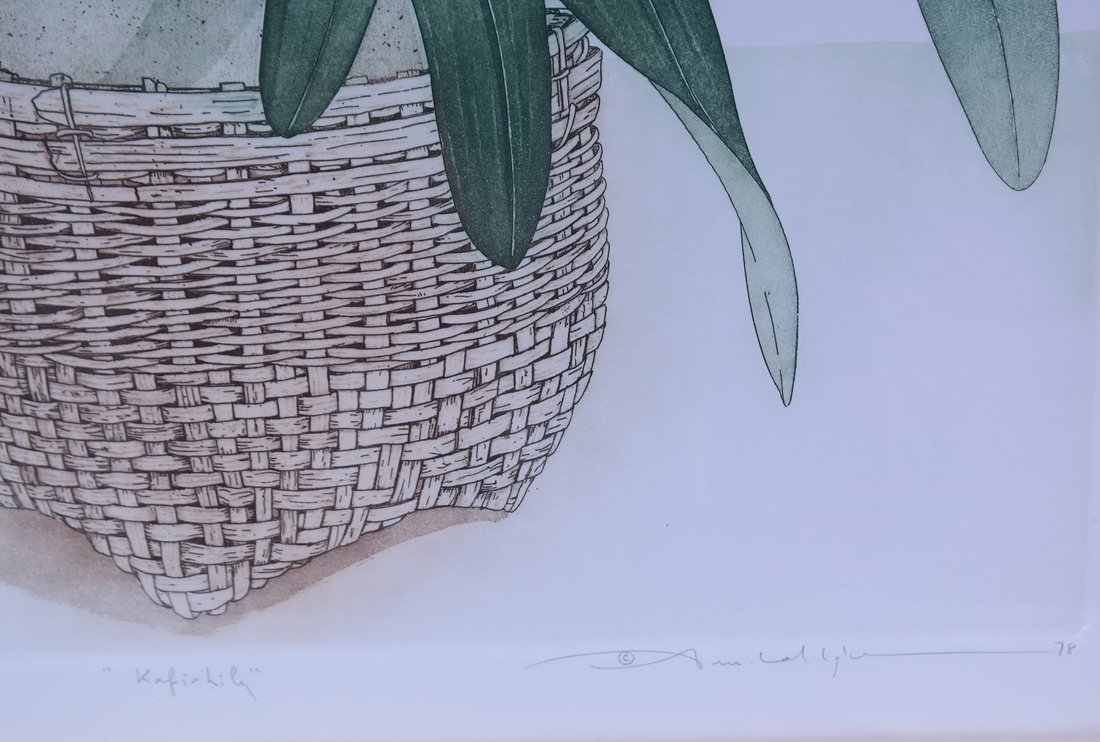 Kafir, Lily Lithograph - 4