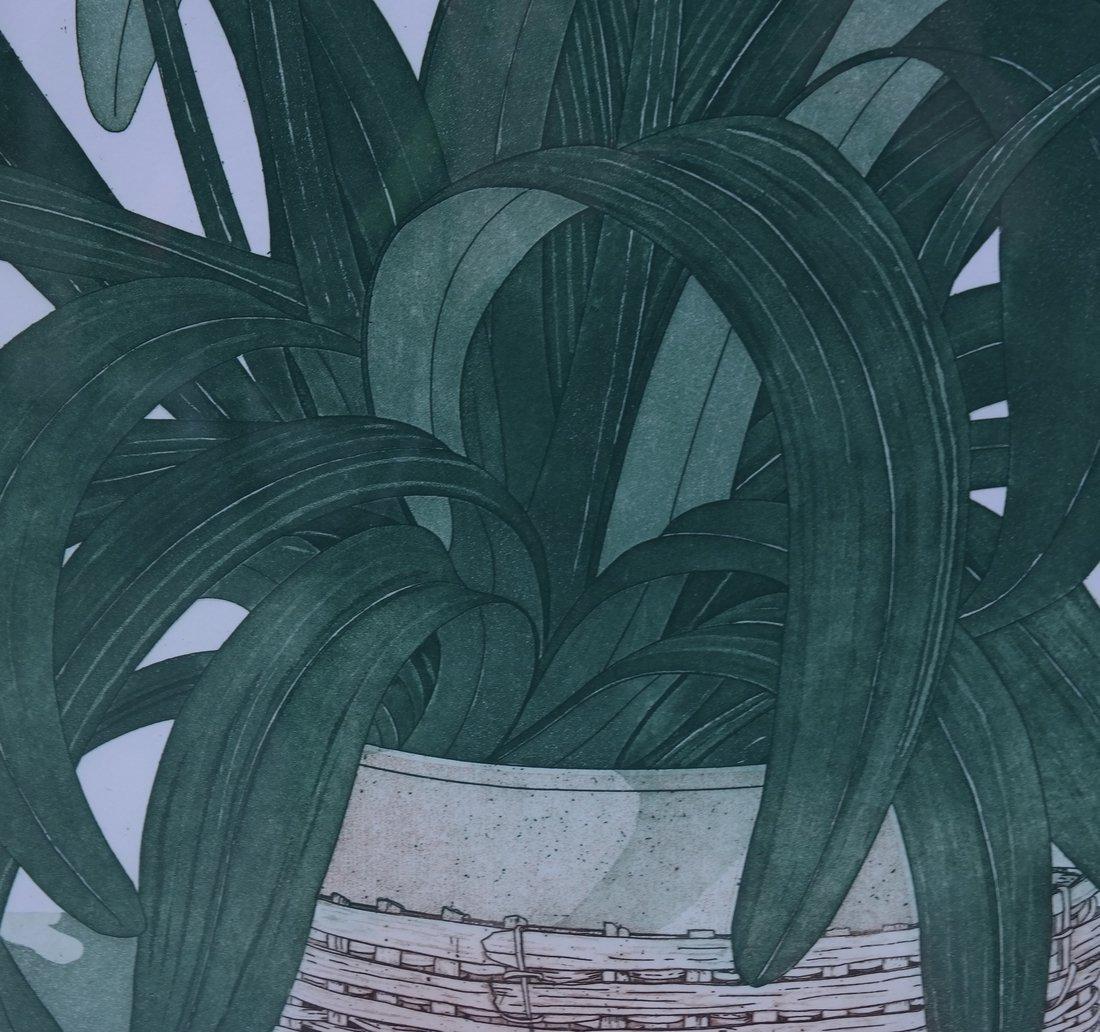 Kafir, Lily Lithograph - 6