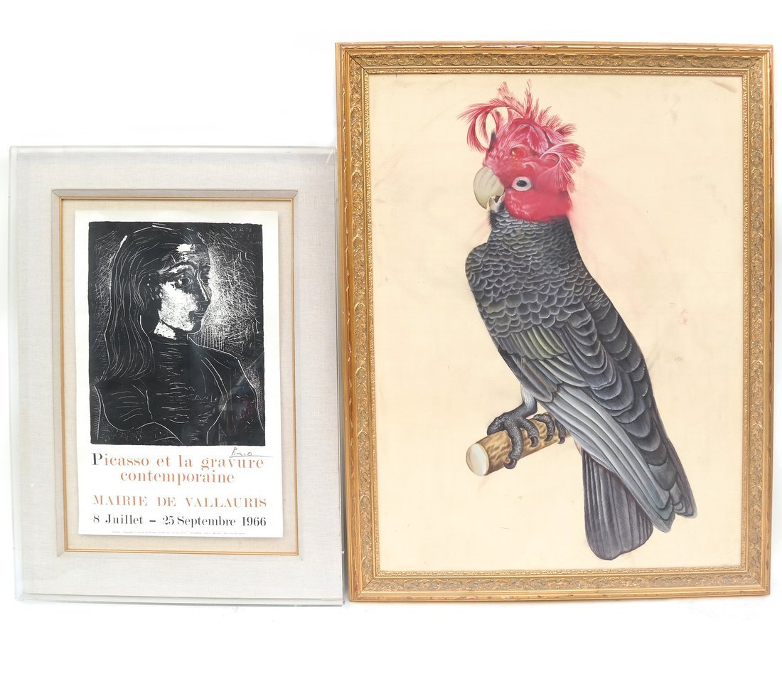 Two Prints, A Picasso And A Parrot