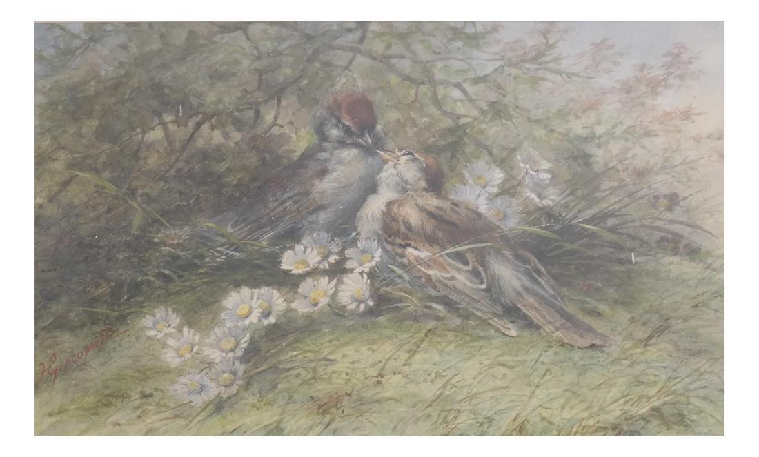 Hector Giacomelli, Birds, Watercolor