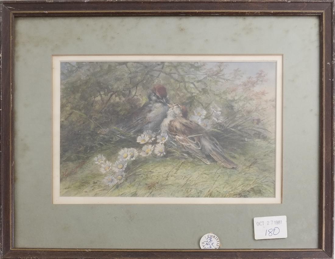 Hector Giacomelli, Birds, Watercolor - 2