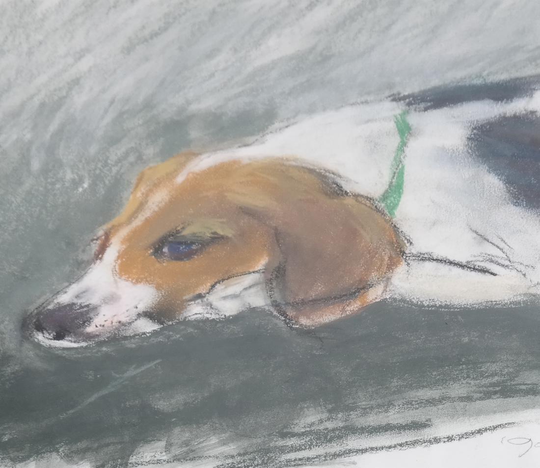 Resting Dog, Gouache - 4