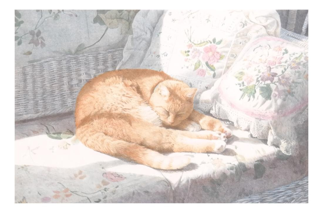 Sleeping Cat, Framed Colored Lithograph