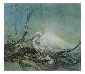 Swan & The Nest - Watercolor