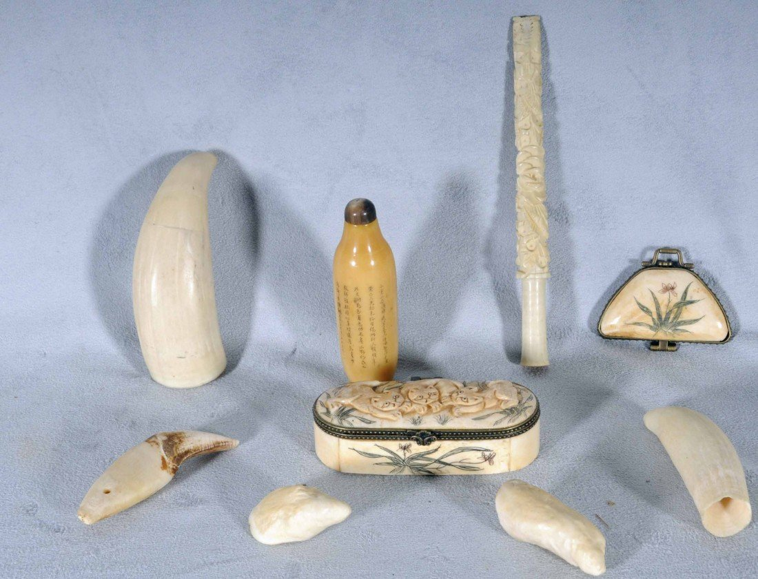 603: 9 MISCELLANEOUS IVORY PCS. CONSISTING OF 5 TEETH,