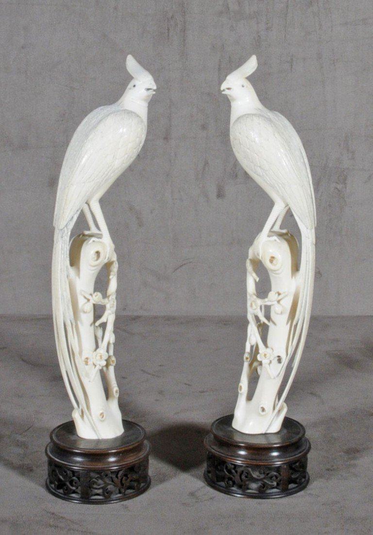151: PR. CHINESE CARVED IVORY PHOENIX BIRDS STANDING ON