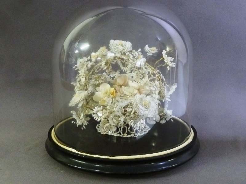 19th Century Glass Dome w/Hand Made Shell Floral - 2