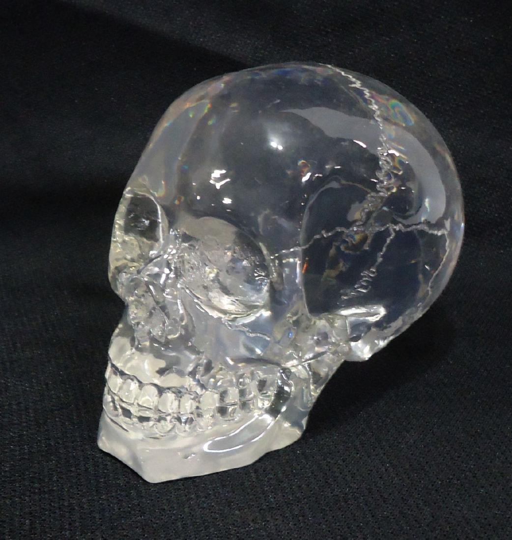 Lucite Skull