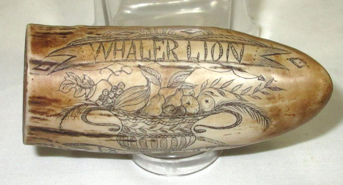 Modern Composition Scrimshaw Whale's Tooth