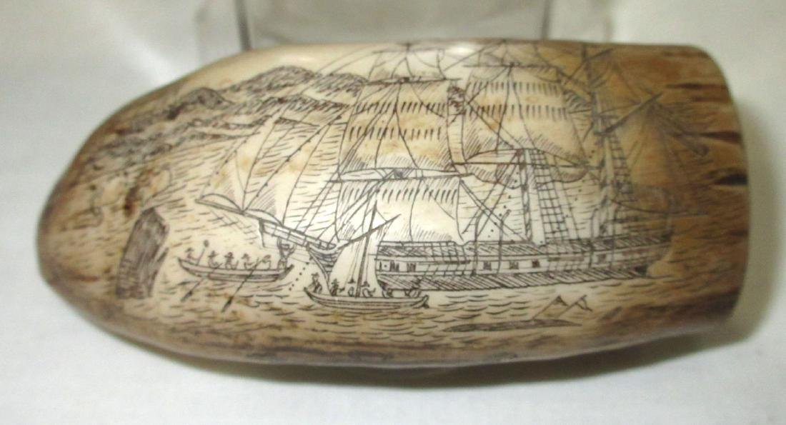 Modern Composition Scrimshaw Whale's Tooth - 2