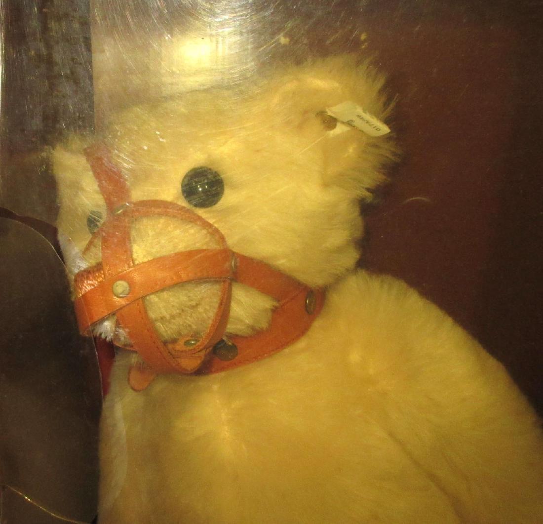 Maulkorb Teddy Bear - 2