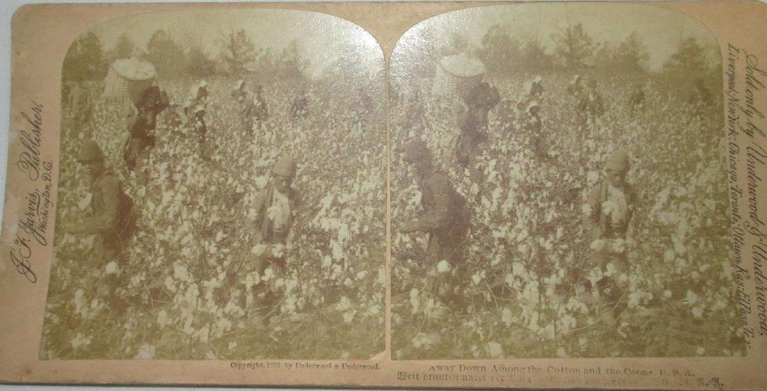 5 Black Americana Stereograph View Cards - 3