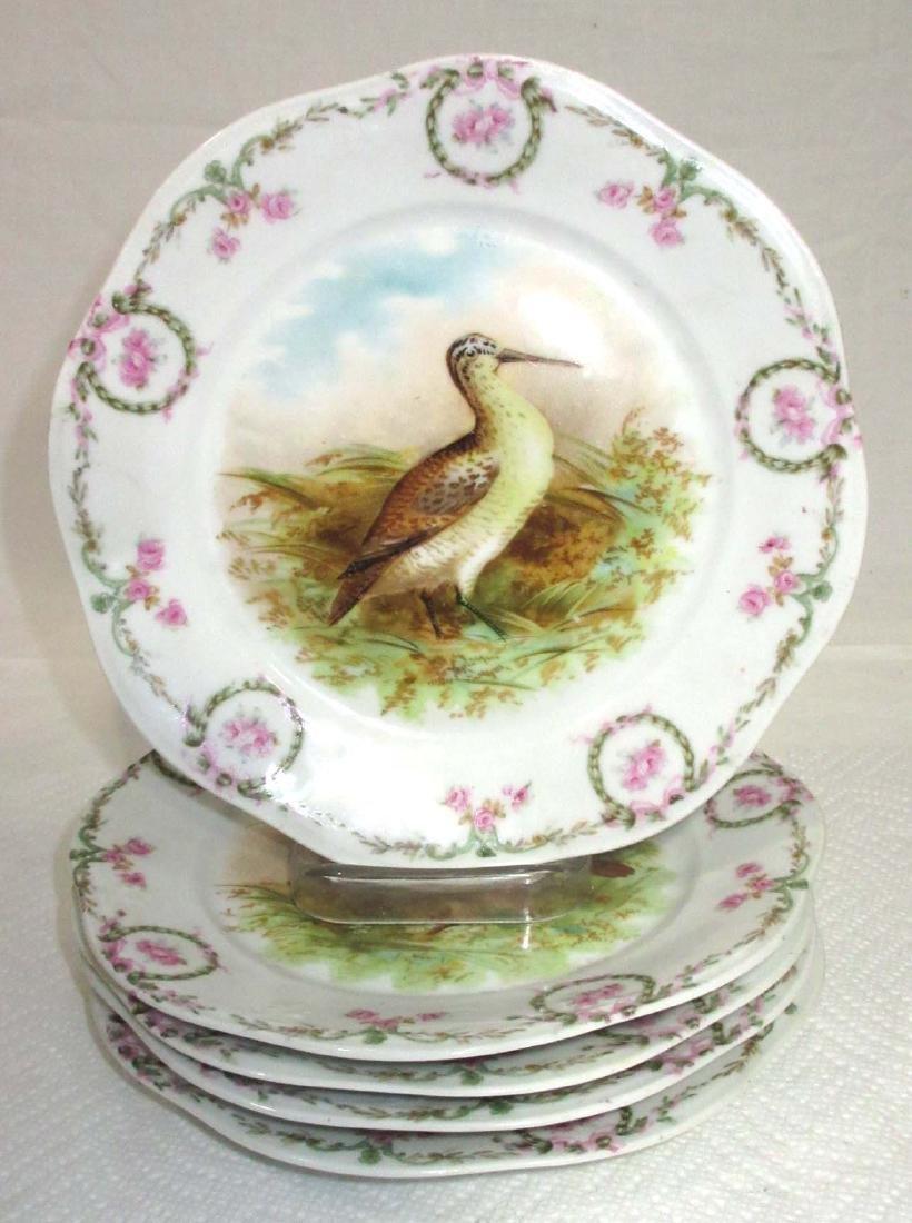 5pc H.P. Bird Plates