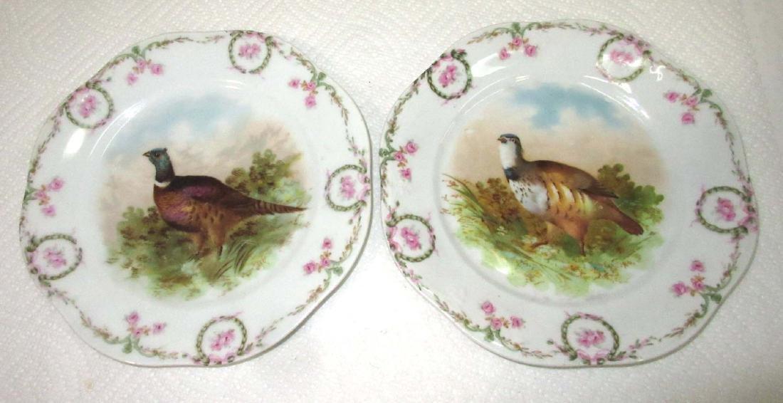 5pc H.P. Bird Plates - 2