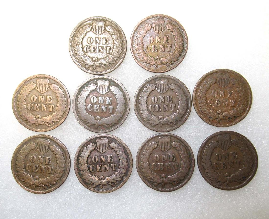 10 Indian Head Cents - 2