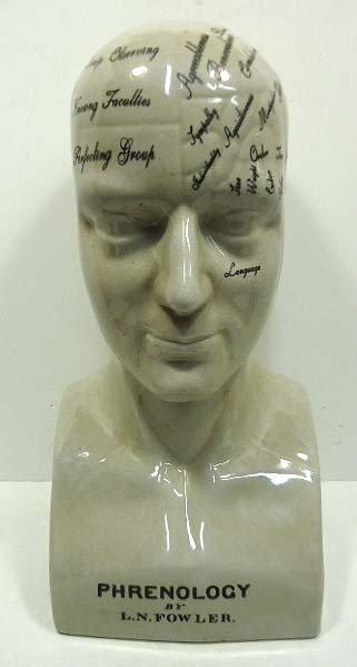 52C: Porc. Phrenology Head