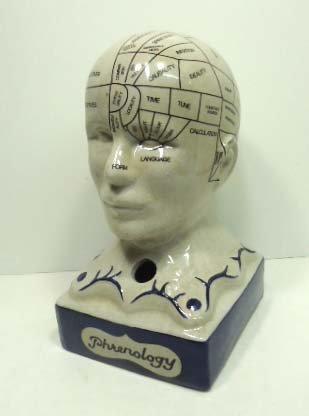 11: Phrenology Head
