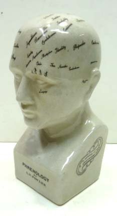 Phrenology Porcelain Head