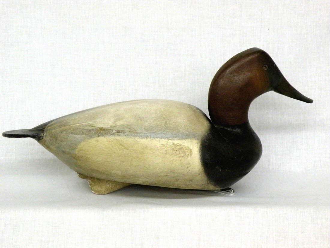 15: Ward Bros. canvasback drake decoy - 3